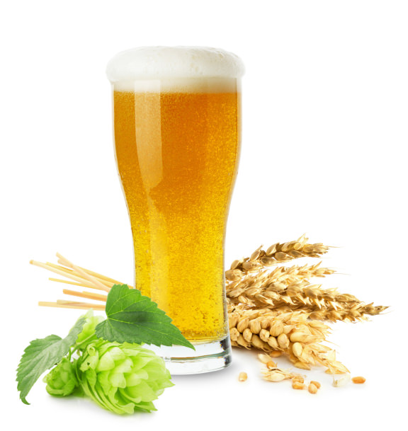 glass of beer with wheat and hops