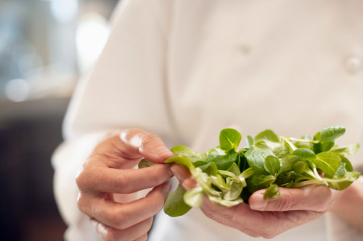 Chef Holding Watercress
