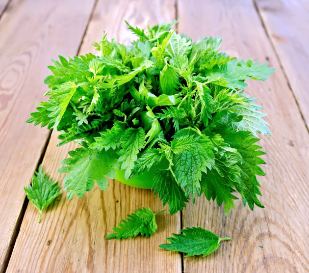 Nettles in a green bowl on board