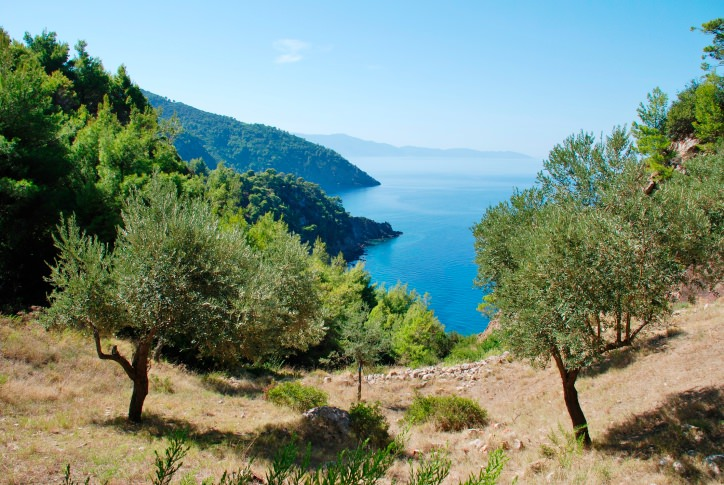 Why You Should Visit Alonnisos