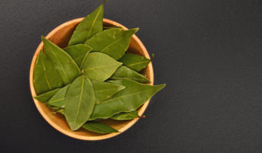 Greek mastic cooking and medicinal info - Cook bay leaves ...