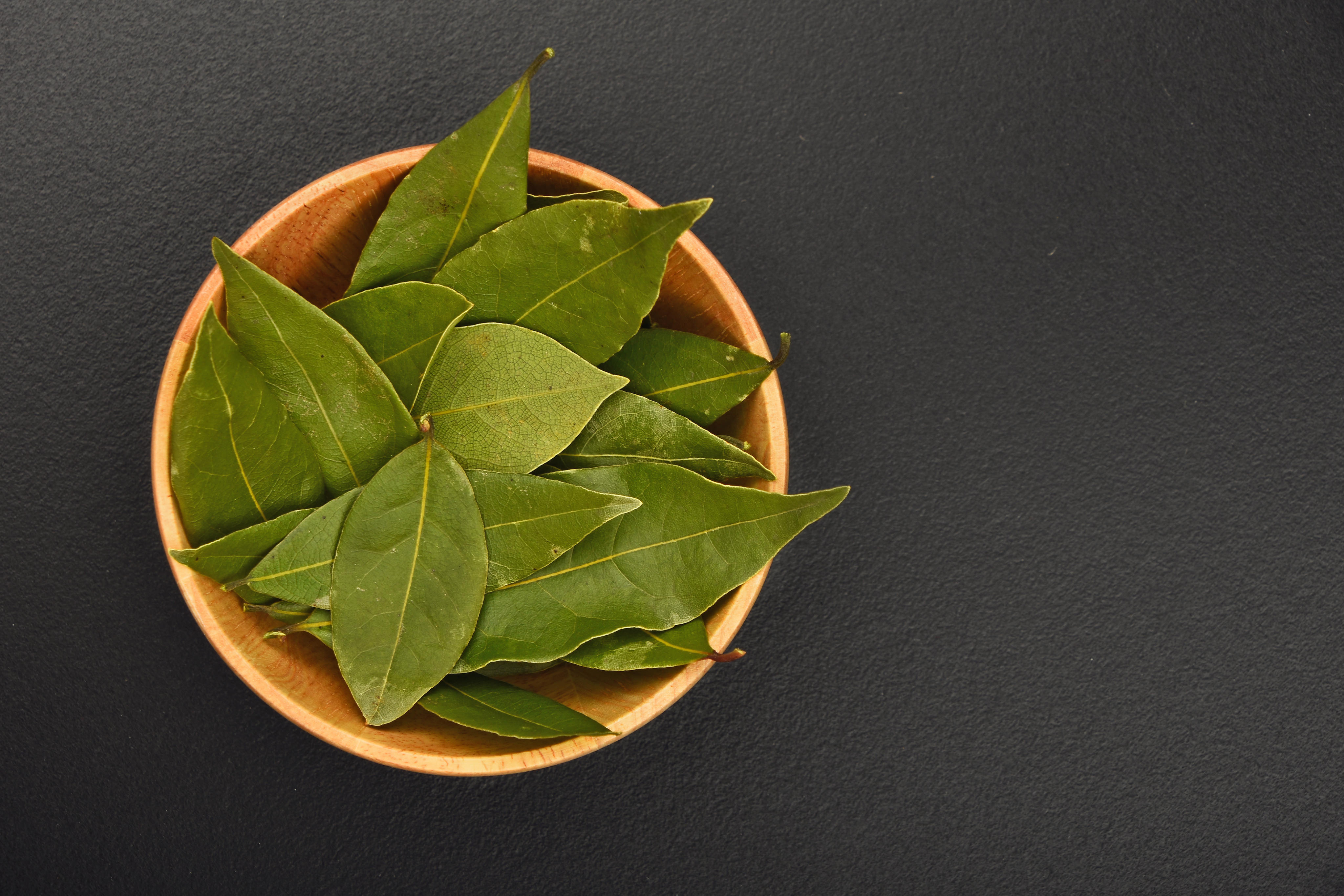 Greek bay leaves cooking and medicinal info - Cook bay leaves ...