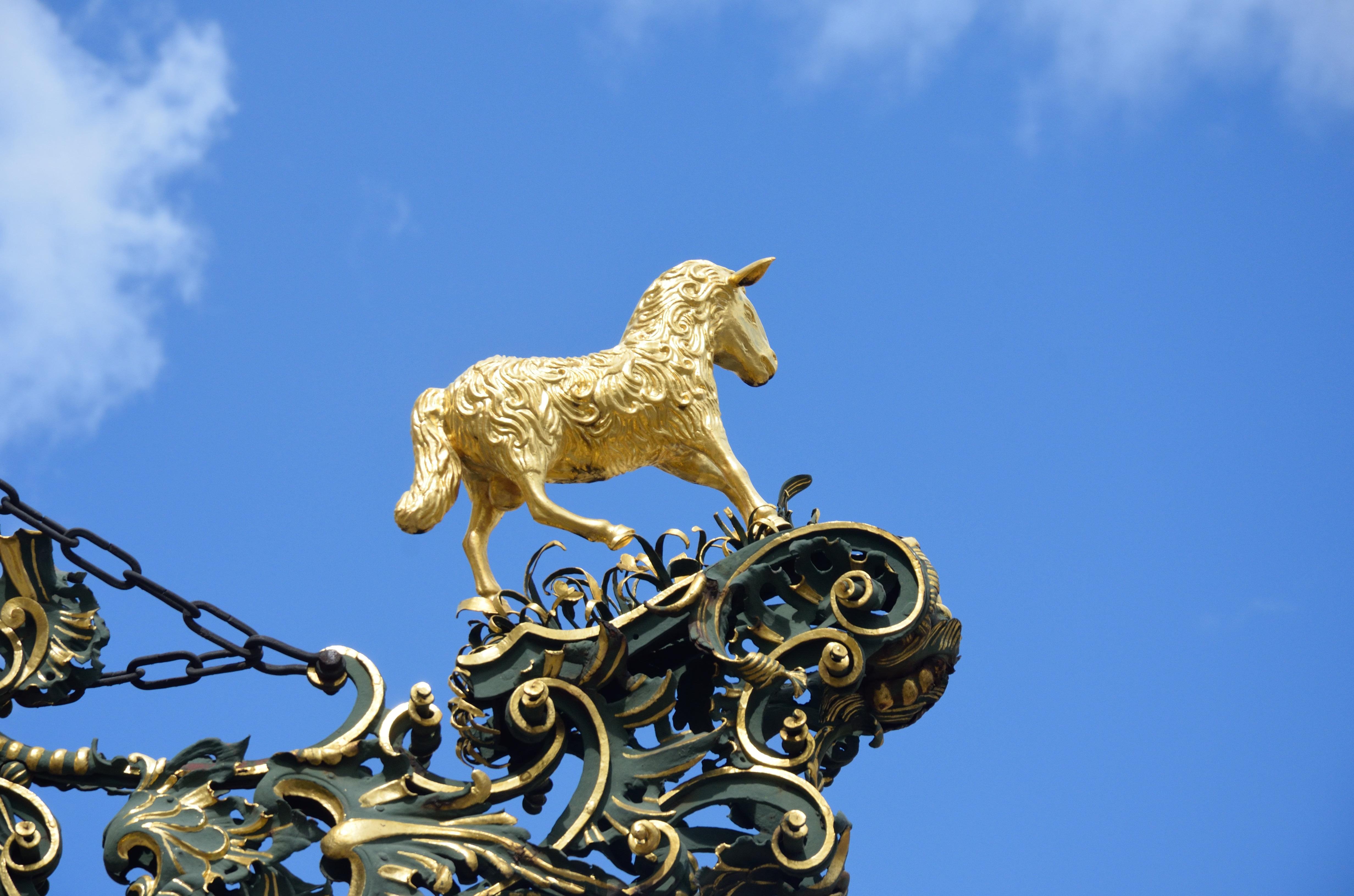 What The Golden Fleece Is Greek Mythology