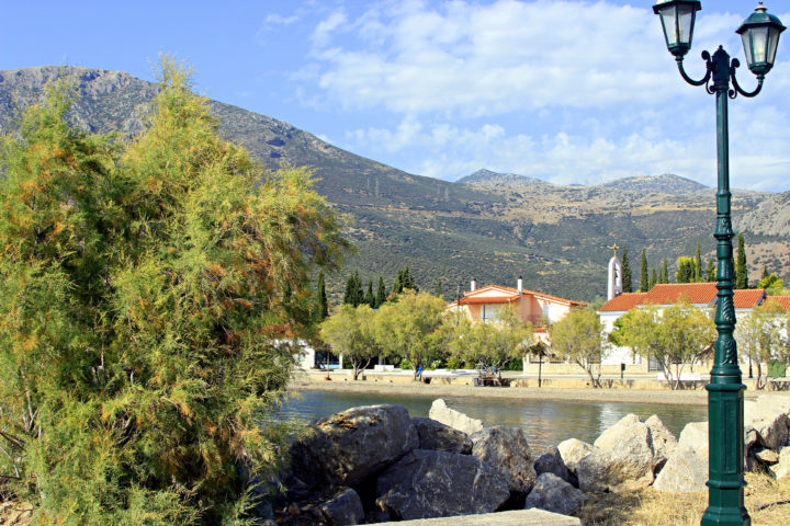 Shopping Experiences to Have in Sterea, Greece