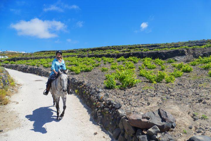 Go Horseback Riding in Mykonos, Greece