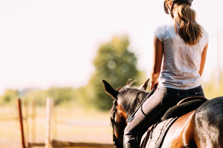 Go Horseback Riding on Hydra
